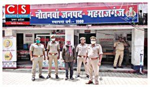 ganja smuggling news maharajganj